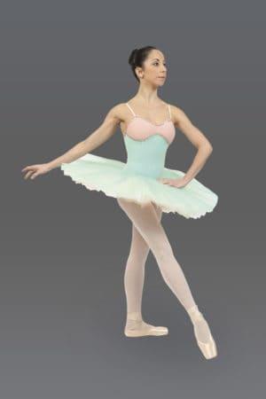 Candide Fairy Tutu